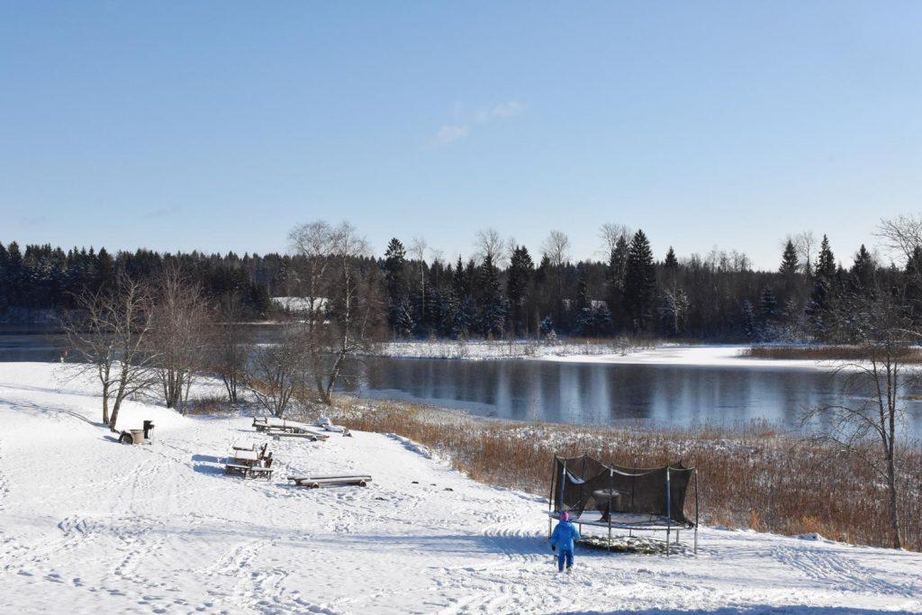 愛沙尼亞的冬天