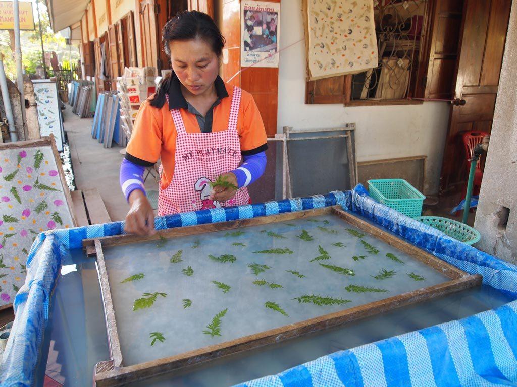 傳統紙Saa Paper,做紙的原材料來自桑樹。首先把桑樹的纖維平均分佈在水上,然後鋪上喜歡的花瓣和葉子,不用10分鐘就可以完成了。