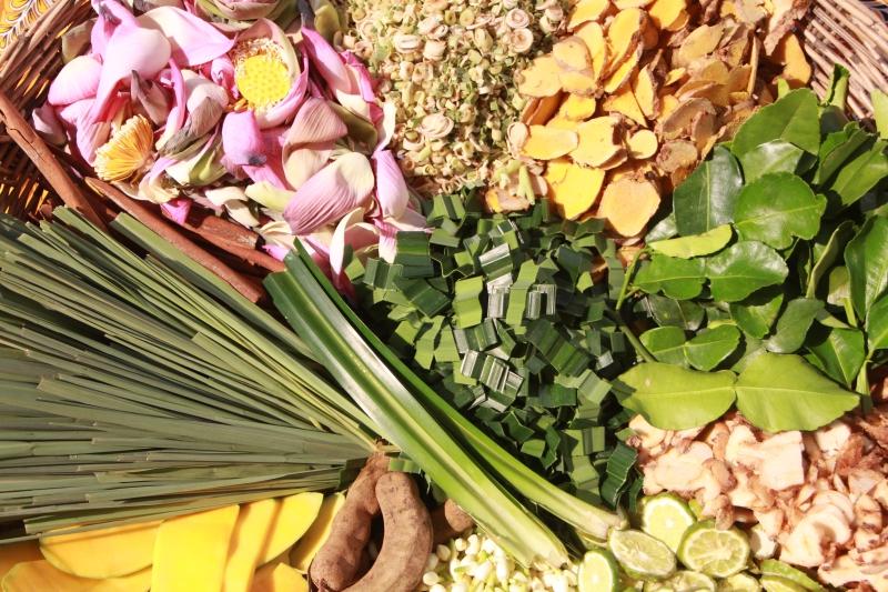 源自印度阿育吠陀的藥草療法-注重身心平衡,利用植物油、蜜糖、不同形態的草本成份(磨粉、軟漿、榨汁等)入藥。